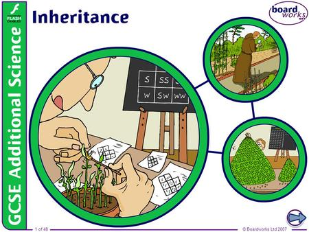 Boardworks GCSE Additional Science: Biology Inheritance