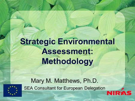 Strategic Environmental Assessment: Methodology Mary M. Matthews, Ph.D. SEA Consultant for European Delegation.