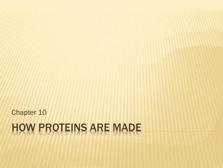 Chapter 10 How proteins are made.