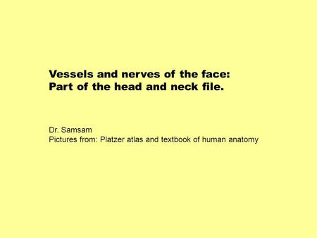 Vessels and nerves of the face: Part of the head and neck file.