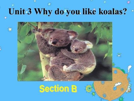 Unit 3 Why do you like koalas? What animals can you see?