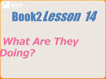 Book2 Lesson 14 What Are They Doing? What Are They Doing?