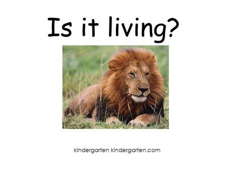 Is it living? kindergarten kindergarten.com.