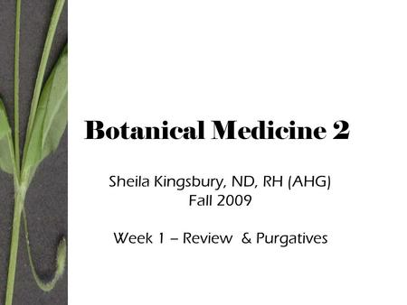 Botanical Medicine 2 Sheila Kingsbury, ND, RH (AHG) Fall 2009 Week 1 – Review & Purgatives.