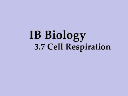 IB Biology 3.7 Cell Respiration.