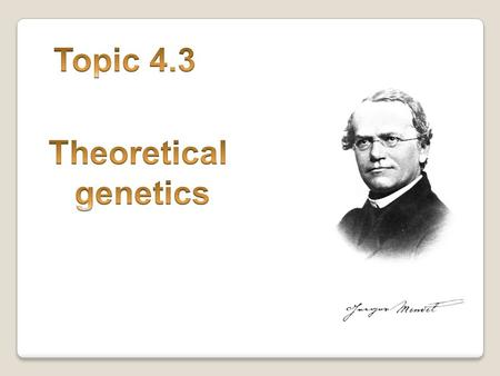 Topic 4.3 Theoretical genetics.