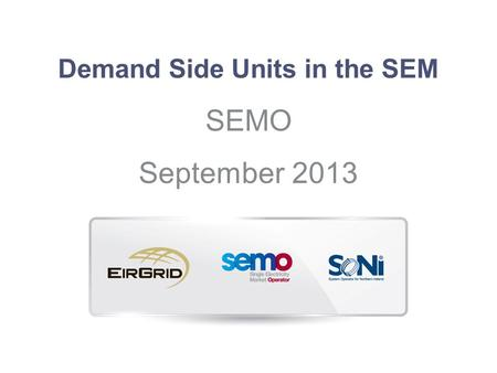 Demand Side Units in the SEM
