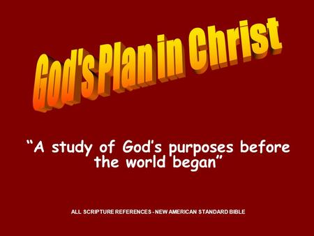 """A study of God's purposes before the world began"""