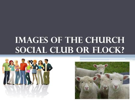 Images of the Church Social Club or Flock?. 80% of Churches are Fellowship Churches which can become nothing more than a social club Because of this focus.