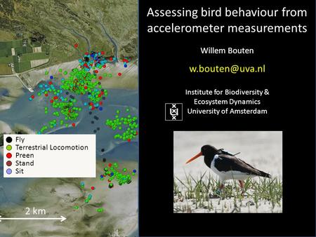 2 km Fly Terrestrial Locomotion Preen Stand Sit Assessing bird behaviour from accelerometer measurements Willem Bouten Institute for Biodiversity.