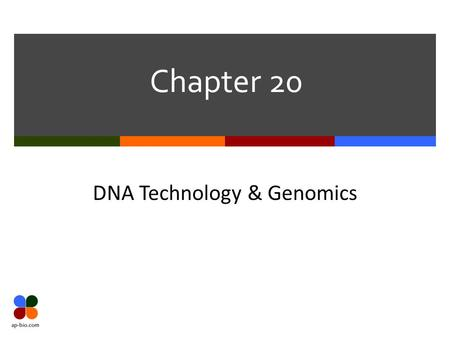 Chapter 20 DNA Technology & Genomics. Slide 2 of 14 Biotechnology Terms Biotechnology Process of manipulating organisms or their components to make useful.