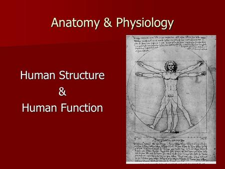 Anatomy & Physiology Human Structure & Human Function.