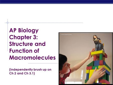 ap biology chapters 20 and 21 Study flashcards on ap biology chapter 16, 17, 18, 19, and 20 test at cramcom quickly memorize the terms, phrases and much more cramcom makes it easy to get the.