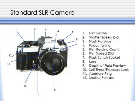 Standard SLR Camera 1.Film winder 2.Shutter Speed Dial 3.Flash Hotshoe 4.Focusing ring 5.Film Rewind Crank 6.Film Speed Dial 7.Flash Synch Socket 8.Lens.