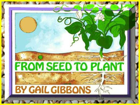 Vocabulary for From Seeds to Plants. Vocabulary for From Seeds to Plants
