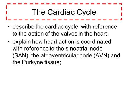 The Cardiac Cycle describe the cardiac cycle, with reference to the action of the valves in the heart; explain how heart action is coordinated with reference.