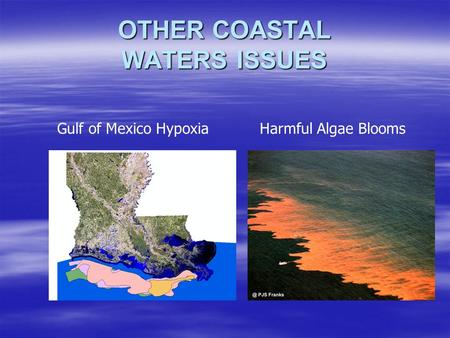 OTHER COASTAL WATERS ISSUES Gulf of Mexico HypoxiaHarmful Algae Blooms.