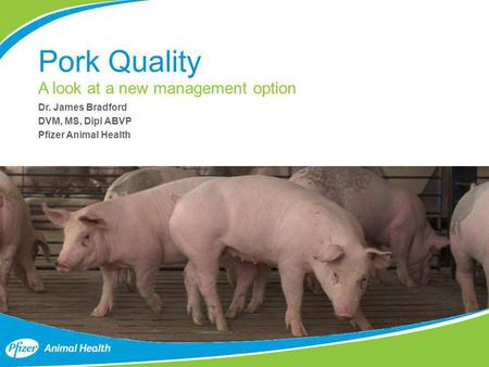 Pork Quality A look at a new management option