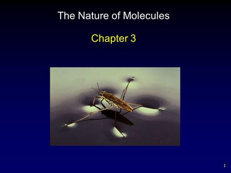 1 The Nature of Molecules Chapter 3. 2 Water Chemistry Water consists of an oxygen atom bound to two hydrogen atoms by two single covalent bonds. – stable.