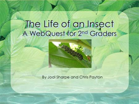 The Life of an Insect A WebQuest for 2 nd Graders By Jodi Sharpe and Chris Payton.