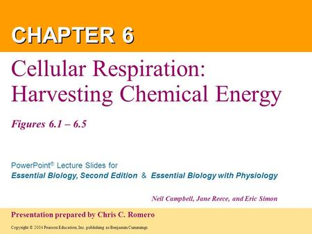 Cellular Respiration: Harvesting Chemical Energy Figures 6.1 – 6.5