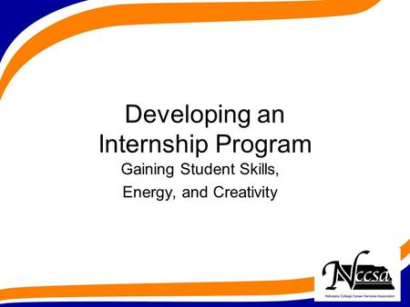Developing an Internship Program Gaining Student Skills, Energy, and Creativity.
