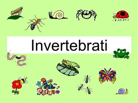 Invertebrati. This is a Magic PowerPoint or How to make sure this PowerPoint behaves like an Interactive Whiteboard.