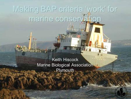 Making BAP criteria 'work' for marine conservation