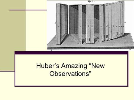 Hubers Amazing New Observations. Presentations online Before you take copious notes, all these presentations are online here: