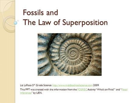 Fossils and The Law of Superposition
