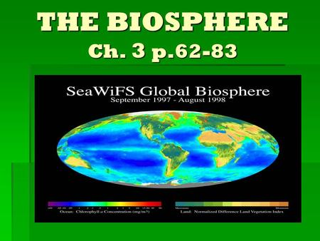THE BIOSPHERE Ch. 3 p.62-83.