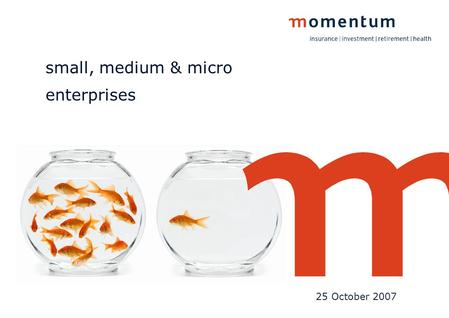 Small, medium & micro enterprises 25 October 2007.