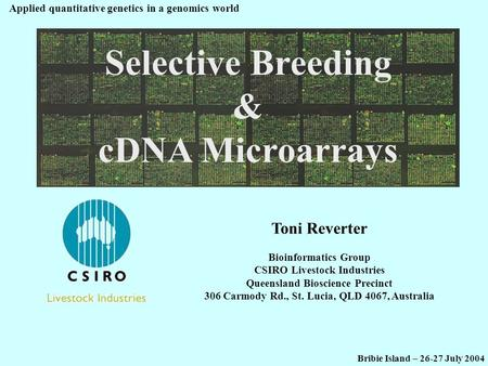 Selective Breeding & cDNA Microarrays