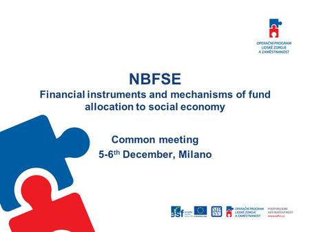 NBFSE Financial instruments and mechanisms of fund allocation to social economy Common meeting 5-6 th December, Milano.