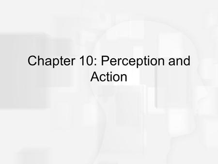 "Chapter 10: Perception and Action. Overview of Questions How does the way the environment ""flows by"" a moving car help the driver stay on the road? How."