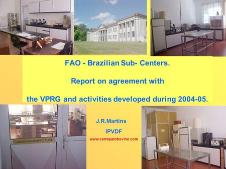 FAO - Brazilian Sub- Centers. Report on agreement with the VPRG and activities developed during 2004-05. J.R.Martins IPVDF www.carrapatobovino.com.