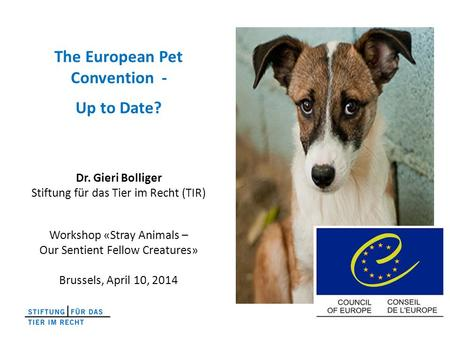 The European Pet Convention - Up to Date? Dr. Gieri Bolliger Stiftung für das Tier im Recht (TIR) Workshop «Stray Animals – Our Sentient Fellow Creatures»