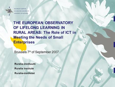THE EUROPEAN OBSERVATORY OF LIFELONG LEARNING IN RURAL AREAS: The Role of ICT in Meeting the Needs of Small Enterprises Brussels 7 th of September 2007.