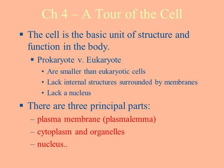 Ch 4 – A Tour of the Cell The cell is the basic unit of structure and function in the body. Prokaryote v. Eukaryote Are smaller than eukaryotic cells Lack.