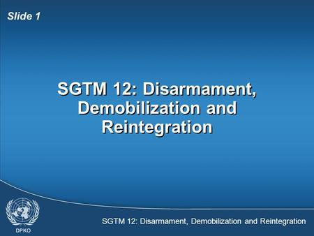 SGTM 12: Disarmament, Demobilization and Reintegration Slide 1 SGTM 12: Disarmament, Demobilization and Reintegration.