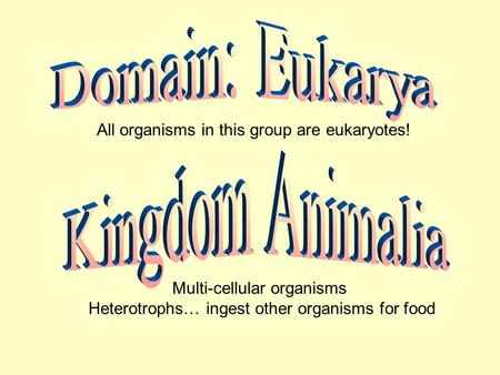 All organisms in this group are eukaryotes! Multi-cellular organisms Heterotrophs… ingest other organisms for food.