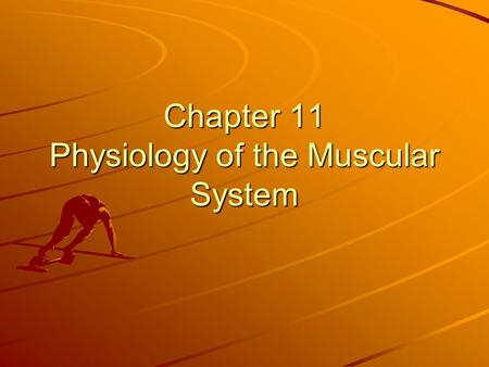 Chapter 11 Physiology of the Muscular System