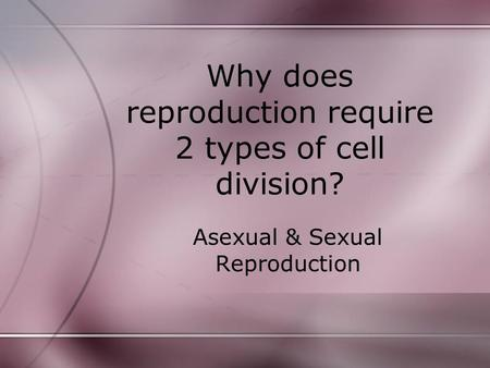 Why does reproduction require 2 types of cell division?