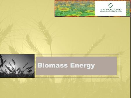 Biomass Energy. Presentation What is biomass? Types of biomass energy sources Biomass conversion Biomass advantage Status and promotion of domestic investment.