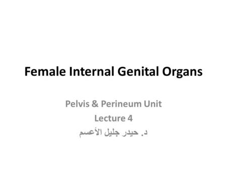 Female Internal Genital Organs