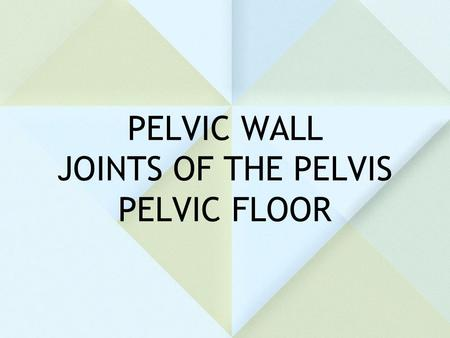 PELVIC WALL JOINTS OF THE PELVIS PELVIC FLOOR