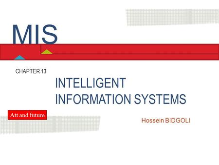 MIS INTELLIGENT INFORMATION SYSTEMS CHAPTER 13 Att and future