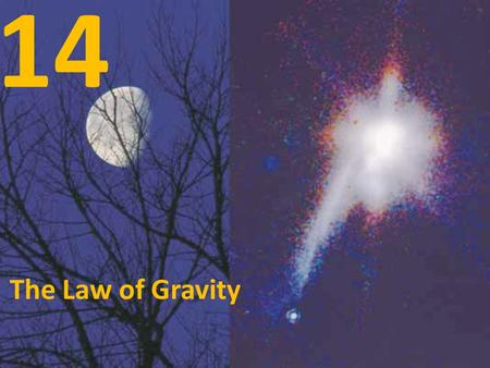 14 The Law of Gravity.
