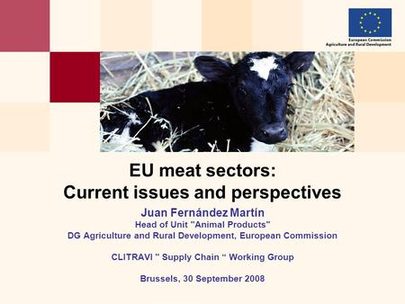 EU meat sectors: Current issues and perspectives Juan Fernández Martín Head of Unit Animal Products DG Agriculture and Rural Development, European Commission.