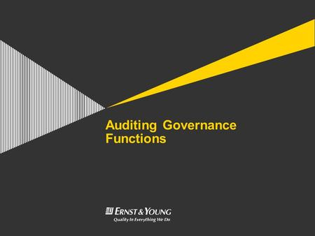 Auditing Governance Functions